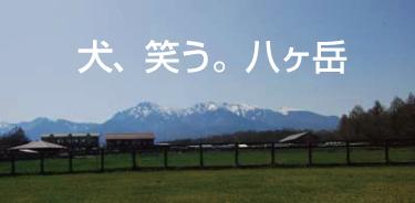 犬 八ヶ岳