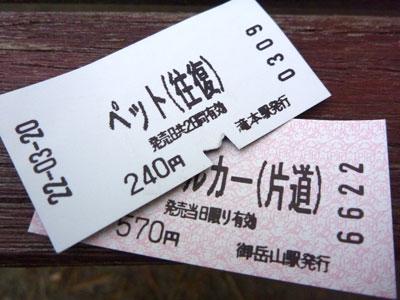 東京 ドッグカフェ