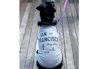画像2: 【 大型犬専用 大型犬サイズの犬服 】犬服 タンクトップ San Francisco 大型犬用