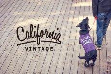 画像4: 【 California Vintage 】犬服 タンクトップ Malibu (4)