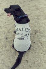 画像3: 【 California Vintage 】犬服 タンクトップ Malibu (3)