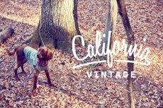 画像2: 【 California Vintage 】犬服 タンクトップ Yosemite (2)