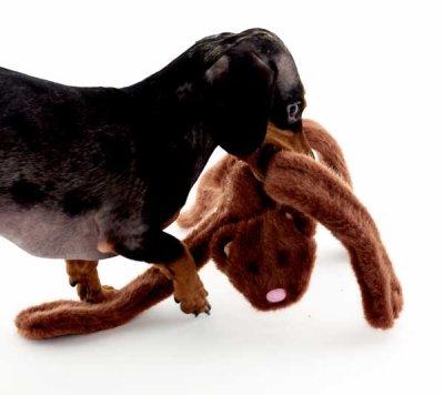 画像3: 【DOGGLES】Bear Brown Penta Pull