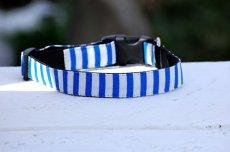 画像2: 【Isabella Cane】 Stripe  首輪 (2)