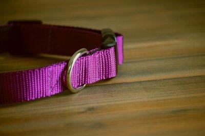 画像3: 【Sun Valley】 New ウェブカラー首輪 Purple
