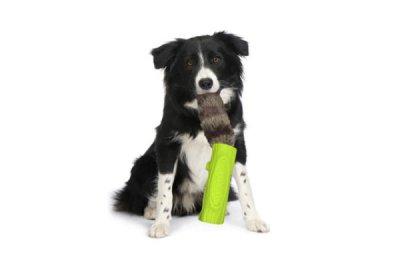画像1: 【Pet Projekt】DOG LOG 犬の丸太 - パープル