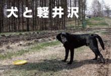 犬のおもちゃ マリブドッグ