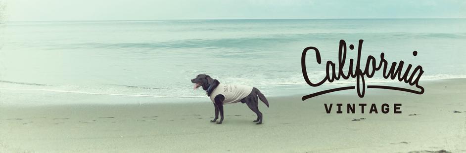 犬服 カリフォルニア