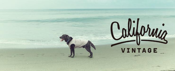 犬服 おしゃれ 大型犬用
