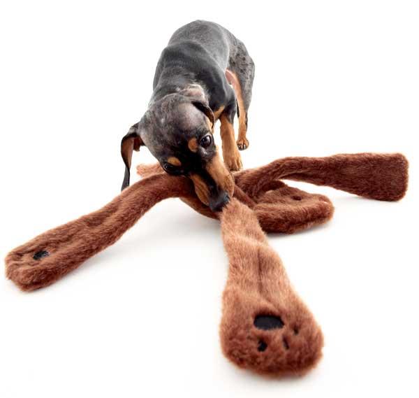 画像1: 【DOGGLES】Bear Brown Penta Pull (1)