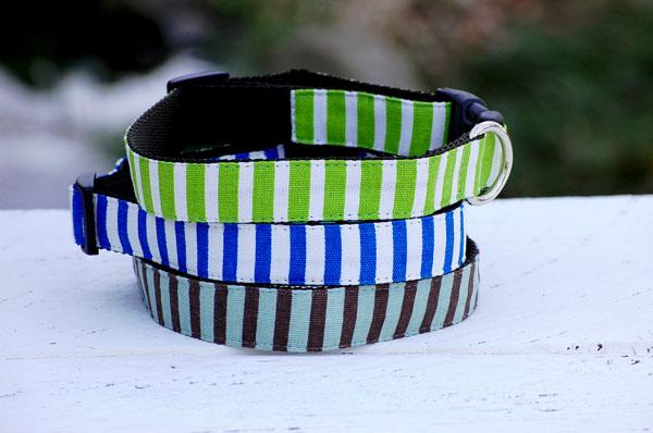 画像1: 【Isabella Cane】 Stripe  首輪 (1)