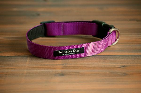 画像1: 【Sun Valley】 New ウェブカラー首輪 Purple (1)