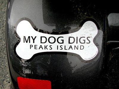 My dog digs アメリカ